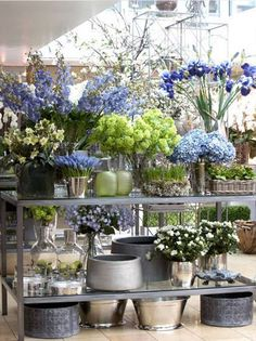 Pulbrook and Gould Blue flower display Fresh Flowers, Beautiful Flowers, Purple Flowers, Exotic Flowers, Yellow Roses, Colorful Flowers, Pink Roses, Florist Shop Interior, Flower Shop Interiors
