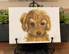 "Barbara Ford's Instagram profile post: ""#watercolorpuppy #watercolorpractice #watercolor Second attempt at a puppy, and I think they are harder than kitties."" Ford, Kitty, Profile, Puppies, Watercolor, Instagram, Little Kitty, User Profile, Pen And Wash"