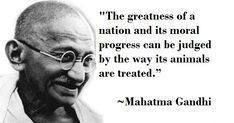 Top 20 Gandhi Jayanti Images Quotes And Messages For 2nd October Gandhi Jayanti Images, Gandhi Jayanti Quotes, Gandhi Quotes, 2 October Gandhi Jayanti, Happy Gandhi Jayanti, Mahatma Gandhi Biography, Peace Crafts, Indian Freedom Fighters, National Festival