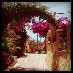 The Greekest place I've ever been to. Corfu, Cottages, Greece, Sidewalk, Memories, Places, Holiday, Cabins, Vacations