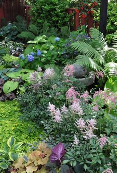 A variety of hosta, heuchera and variegated Jacob's Ladder.  There are also Ostrich Ferns toward the back of this flowerbed.