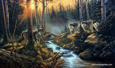 Artist Derk Hansen Unframed Wolf Wildlife Print Shadow Of The Forest | WildlifePrints.com