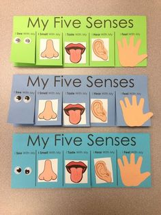Five Senses Craft - flip book visit http://www.letsgetreadyforkindergarten.com