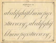 French penmanship: lower case letters.   Fine, I like cursive and good penmanship.  If only mine was this pretty!