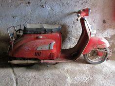 Agrati Garelli Capri 50cc restoration #orestesrestorations #bestrestorer #vintage #vintagelovers #caprirestoration #caprimotorcycle #motorcyclerestoration #classicscooter #garellicapri E Scooter, 50cc, Restoration, Capri, Motorcycle, Classy, Vintage, Chic, Motorcycles