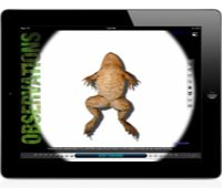 There's a new 3d frog dissection app out which is being featured on Apple's Education site now, with an iphone version too!  https://itunes.apple.com/us/app/froguts-frog-dissection-hd/id641807523?mt=8