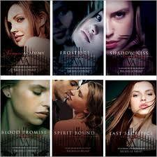 vampire academy series.