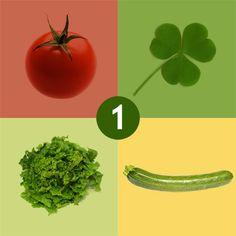 Cominciamo a pianificare la rotazione delle colture nell'orto | FloraBlog
