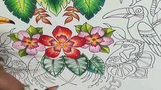 Magical Jungle - Speedy Coloring - Folhagens e Sapinhos - Leaf and Frog