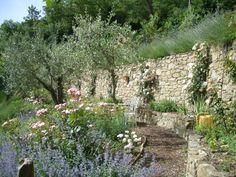 Bramasole's herb terrace