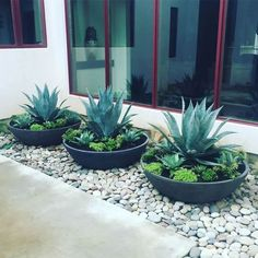 Front Yard Garden Design 50 Simple But Beautiful Front Yard Landscaping Ideas - The goal of many homeowners is to have both a beautiful and low maintenance front yard that they will be […] Front Yard Design, Front Yard Ideas, Front Yard Planters, Black Rock Landscaping, Cheap Landscaping Ideas For Front Yard, Landscaping With Rocks, Front Yard Decor, Small Front Yard Landscaping, Succulent Landscaping