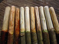Ogham sticks.
