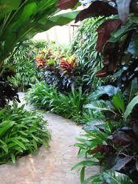 Tropical Walkway Tropical Garden Design, Tropical Backyard, Tropical Landscaping, Garden Landscape Design, Landscaping Plants, Pond Plants, Growing Plants, Hawaiian Gardens, Tropical Gardens