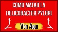 HELICOBACTER PYLORI TRATAMIENTO | COMO MATAR EL HELICOBACTER PYLORI NATU...