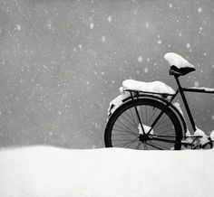 Bicycle covered in the snow ~ somehow this photo just makes me feel fuzzy.
