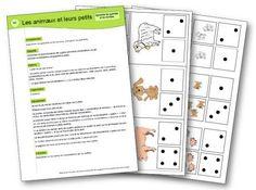 Les animaux et leurs petits jeu mathématiques
