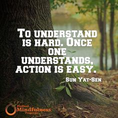 To understand is hard. Once one understands action is easy. - Sun Yat-sen