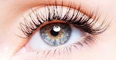 In vielen kosmetischen Produkten findet man Aloe Vera. Die neueste Entdeckung: Die Pflanze lässt die Wimpern schneller wachsen!
