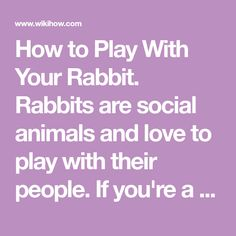 How to Play With Your Rabbit. Rabbits are social animals and love to play with their people. If you're a new rabbit owner, or simply cannot get your current pet to play, there are plenty of tricks you can use to entertain your rabbit. Pay...