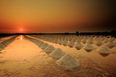 Salt farm at Sunset in Bangkok_ Thailand