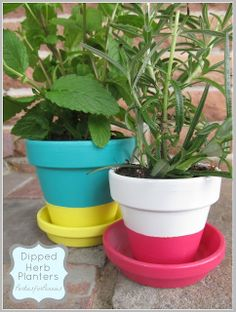 Dip paint herb garden pots by Parties for Pennies.