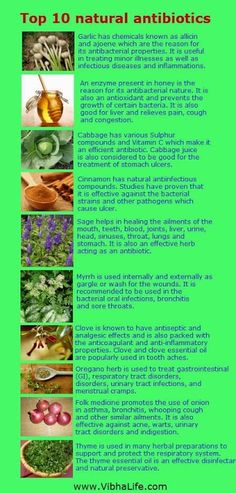 10 natural #antibiotics YOUR HEALTH - Community - Google+