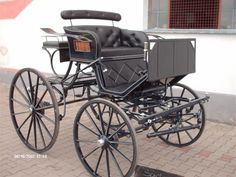 Spider Phaeton Horse Carriage Pleasure driving carriage Wadsworth, Ohio
