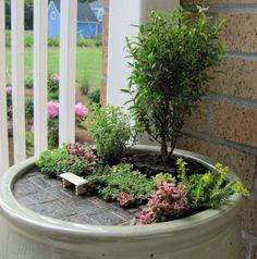 Ann's Miniature Garden
