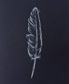 sketch on black paper Black And White Art Drawing, Black Paper Drawing, Doodle Art Drawing, Pencil Art Drawings, Art Drawings Sketches, Black Art, Easy Drawings, Doodle Art For Beginners, Drawing Tutorials For Beginners