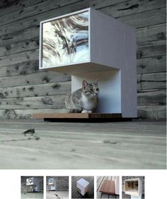 Look! Modern Cat House | Apartment Therapy