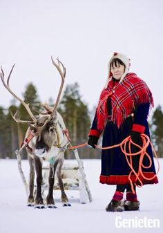 go to Lapland and meet real Lapplander