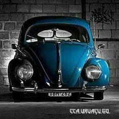 Classic VW - Bug