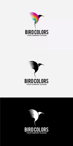 Bird Colors Logo Template AI, EPS
