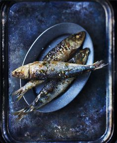 grilled sardines- Jim Norton - tradition pairs it with a young red wine Food Styling, Food Photography Styling, Fish Dishes, Seafood Dishes, Portuguese Recipes, Portuguese Food, Fabulous Foods, Fish Recipes, Food Inspiration