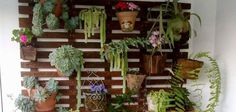 modelos-de-jardins-verticias
