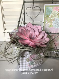 Succulent Garden Suite, Stampin' Up!