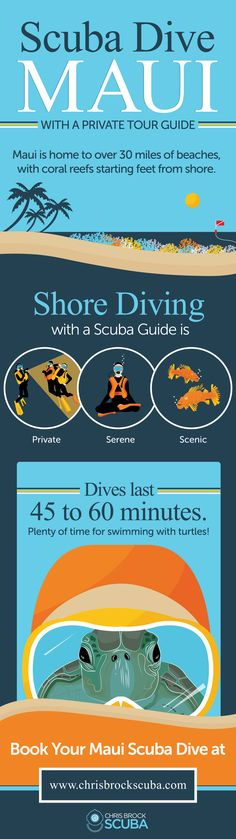 Infographic: Scuba Dive Maui with a Private Tour Guide — Chris Brock Scuba   Guided Diving Tours for PADI Certified Divers in Maui, Hawaii #scubadivingdestinations