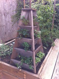 wooden strawberry planter