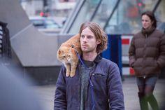 a-street-cat-named-bob-01