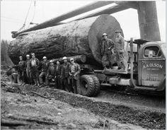 A.A. Olson Logging Port Angeles Washington 1954