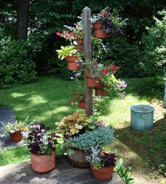 Container Gardening Ideas: This is my favorite. Also got the idea for my fairy garden.