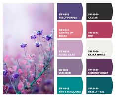 ColorSnap by Sherwin-Williams – ColorSnap by Jennifer C.