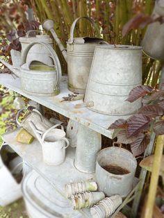 Galvenized watering cans & shelves ~ Eline Pellinkhof