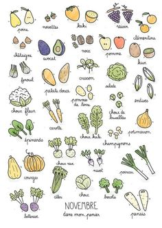 Fruits & Vegetables calendar on Behance Paleo Protein Powder, Recipe Drawing, Pomes, Doodles, Garden Journal, Food Journal, Fruit And Veg, Bullet Journal Inspiration, Food Illustrations