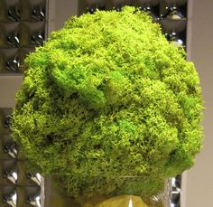 Eco-Friendly Spring Green Moss Pomander by Eco-Lectic Events Flower Girl Bouquet, Kissing Ball, Styrofoam Ball, Spring Green, Green Wedding, Eco Friendly, Diy And Crafts, Herbs, Wands