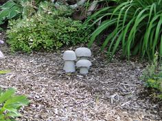 Cement mushrooms