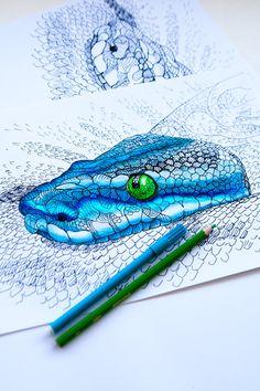 COLORING PAGE - Adult Coloring  - part of Coloring book - Doodling - Coloring sheet - Hand drawn Python - Anaconda