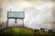 The Dumplin Valley Gang | by Distressed Jewell. Photomanipulation.