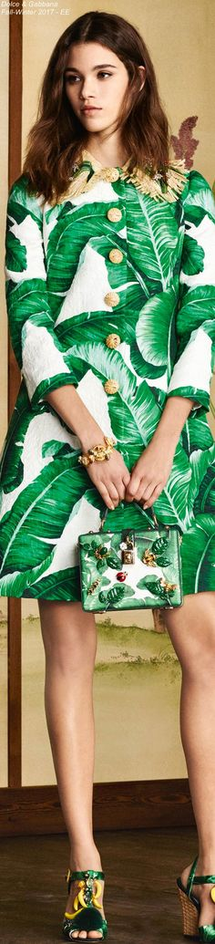 Dolce & Gabbana Fall-Winter 2017 - EE
