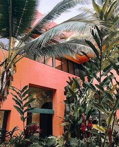 50 ideas for house ideas exterior tropical plants Estilo Tropical, Tropical Vibes, Tropical Plants, Tropical Colors, Tropical Garden, Exterior House Colors, Interior And Exterior, Interior Design, Photocollage